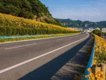公路功能决定技术等级的选用